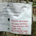 Egy fa nevében küldtek megható üzenetet a lakók a tatabányai városvezetésnek