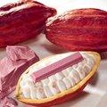 Itt a forradalmian új csokoládé, amilyen még soha nem volt a világon, hamarosan Tatabányán is!