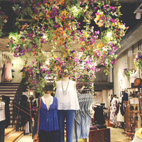 Egy bolt, ami szó szerint virágba borult tavasszal