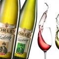 Törley - mostantól pezsgő a borélet