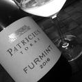Tegnap ittam – Patricius Furmint 2016
