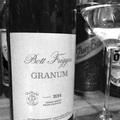 Tegnap ittam – Bott Frigyes Granum 2014