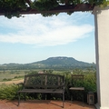 Egy zsebkendőnyi Toscana a Szent György-hegyen - 2HA