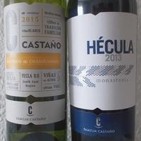 Rejtőzködő borvidékek: Yecla - Bodegas Castano