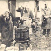 Nincs új a nap alatt: 19. századi reflexiók a magyar borról
