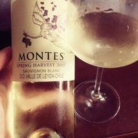 Tegnap ittam – Montes Spring Harvest Sauvignon Blanc 2017
