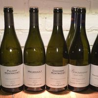Burgundia 2014 a Bortársaságnál