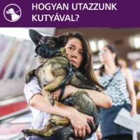 Pártállami stílusú rosszfejség a BKK-n utazó kutyáknak