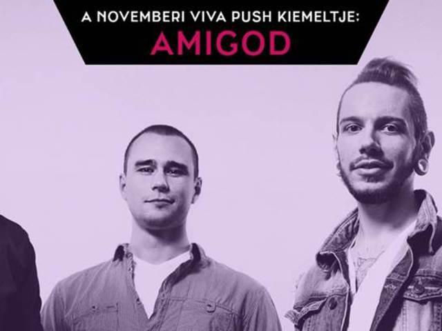 Az Amigod dala a VIVA PUSH novemberi felfedezettje