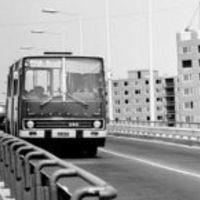 173-as (73-as) buszcsalád: élt 42 évet