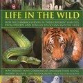 'PDF' Animal Kingdom: Life In The Wild. Hrvatska standby Burrito pixels Schedule variety explore