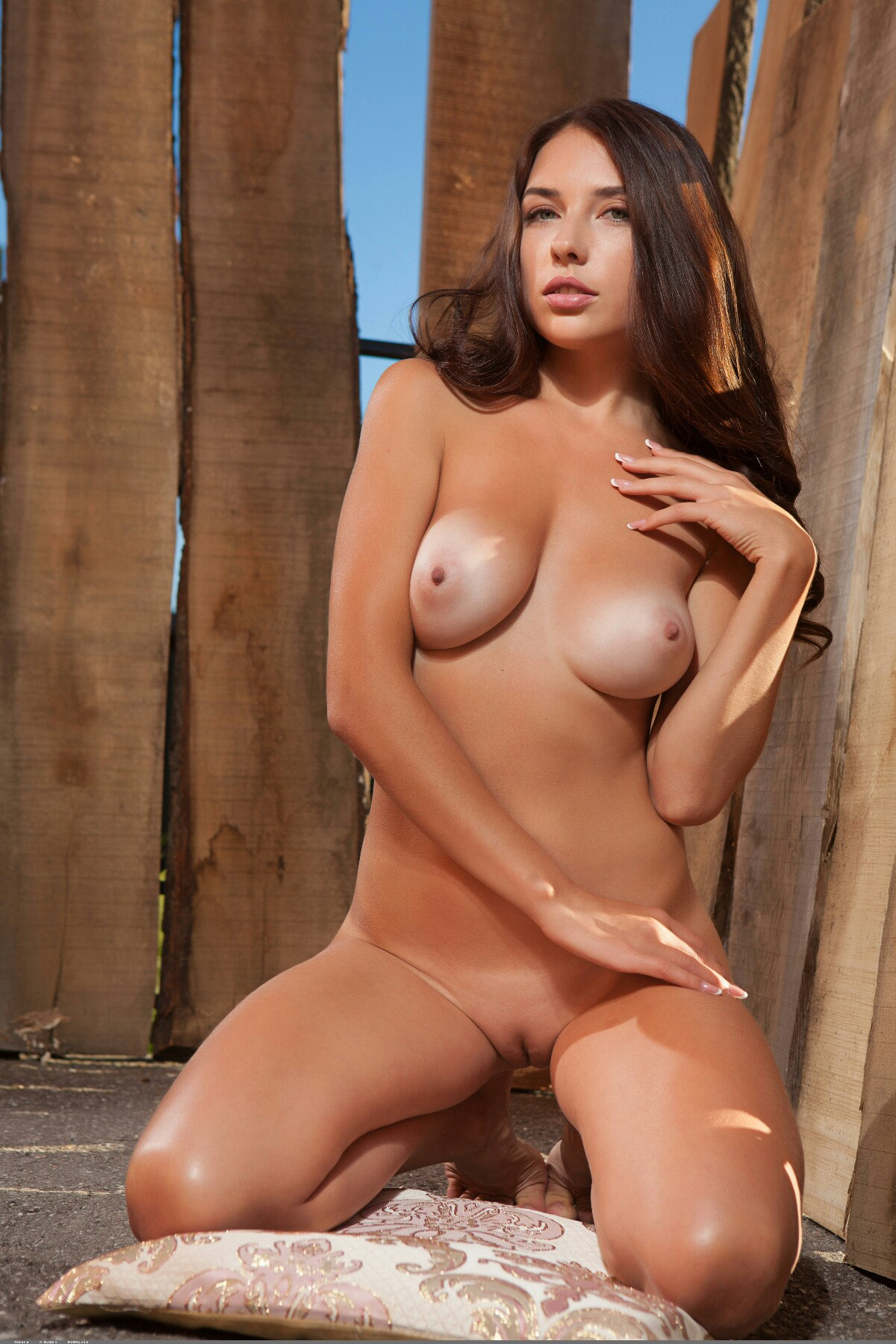 shaved-busty-gorgeous-brunette-babe-niemira-with-beautiful-pussy-from-domai-12.jpg