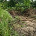A Lakihegyi Fairtásról és környezetkárosításról tud-e a Pest megyei kormányhivatal, s hajlandó-e ellene tenni és segíteni?