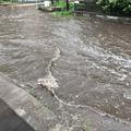 Ha az ÉCSVCS Kft azt mondja, hogy munkálatokat végzett a Thököly úton 2017-ben csapadékvíz elvezetés tekintetében, akkor megtudja ezt mutatni a helyszínen is?