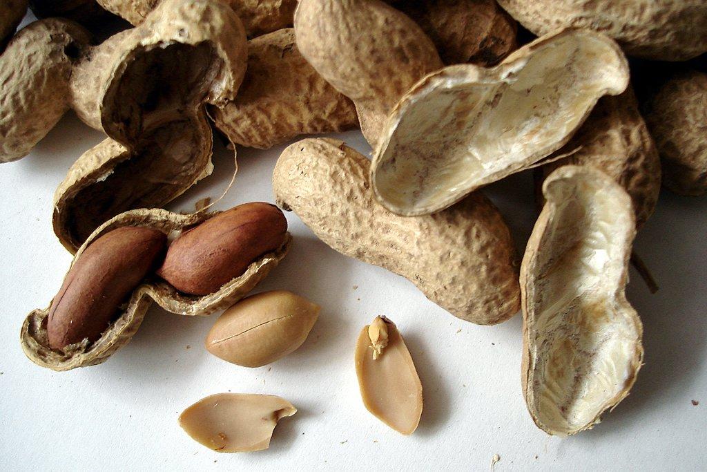 Amit a földimogyoró allergiáról tudni érdemes