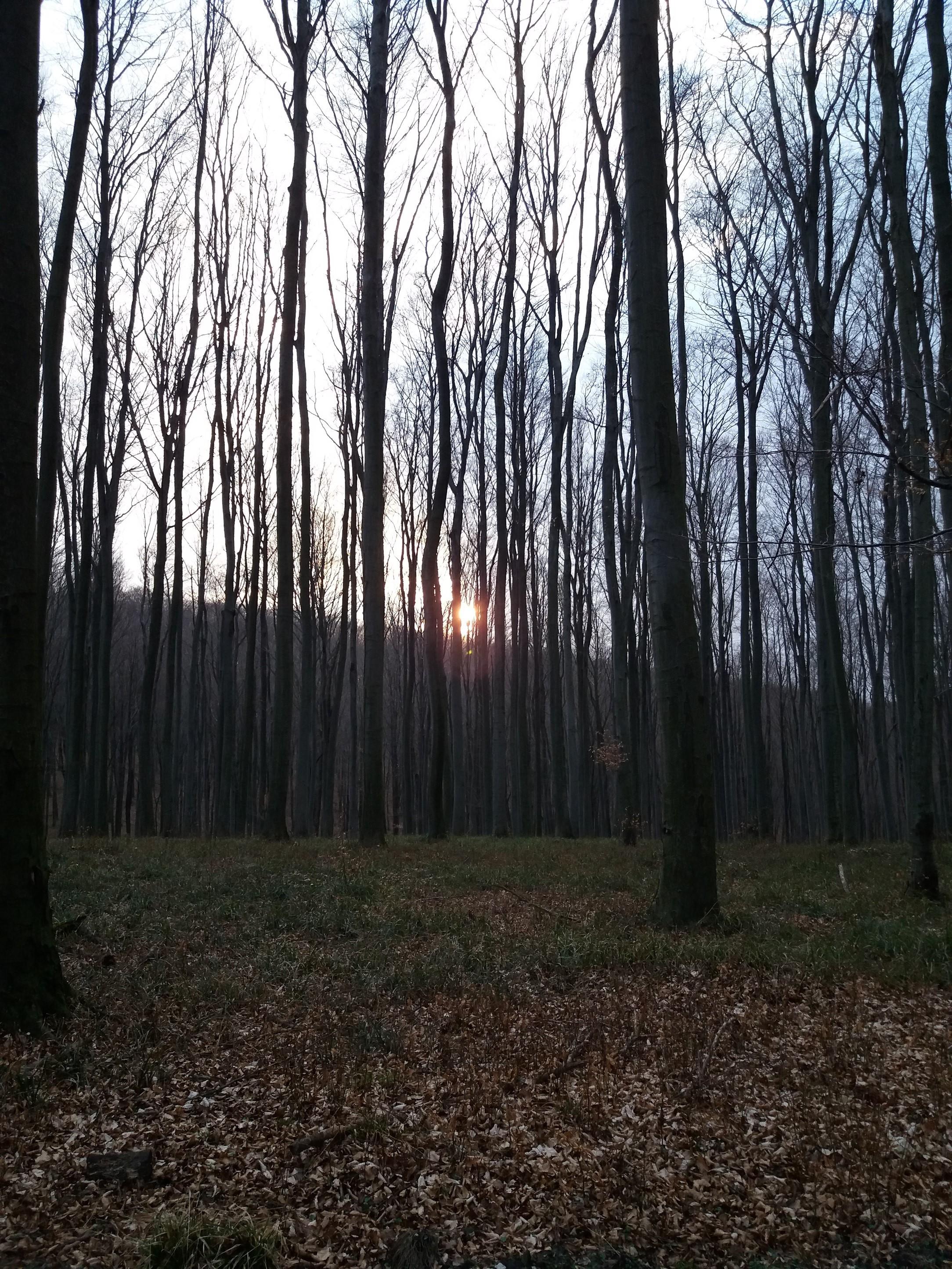 20170315_171715_1.jpg