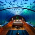 Tengeralatti luxusnászút éhes cápák között