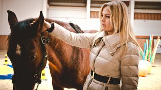 Hogyan tesznek a lovak minket sikeres vezetőkké?