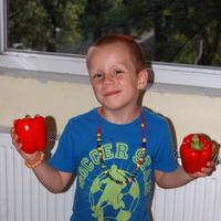 Fűszeres Eszter: Sültpaprika-saláta