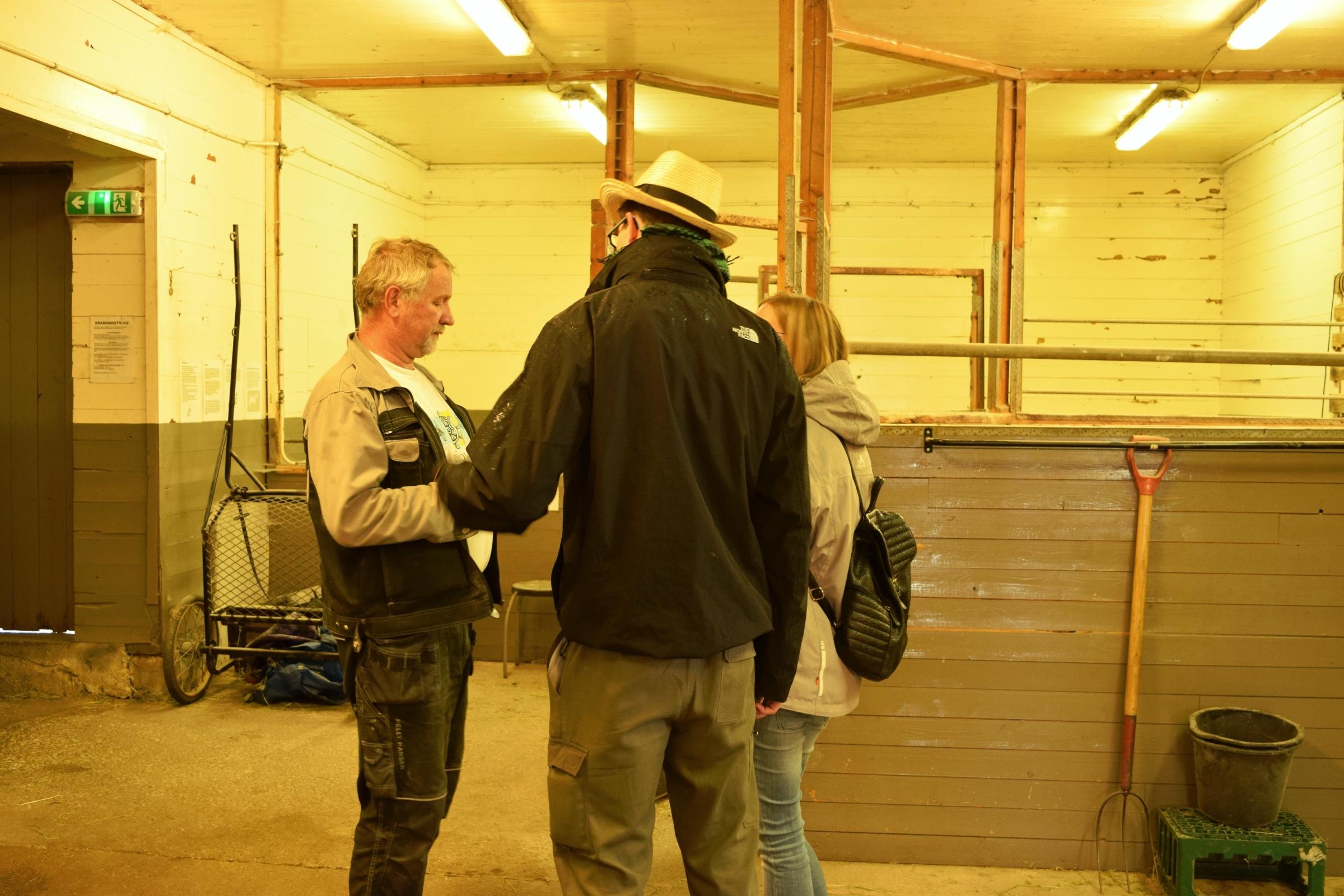 Az istállóban kezdtük a beszélgetést Kristoferrel. Az állatok közül csak a malackák voltak otthon.