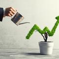 Nagy fejlesztésekre készülnek a kisvállalatok