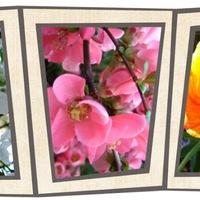 Tavasz van... isteniiiii :))