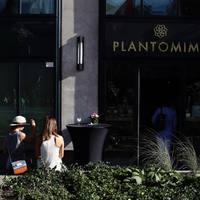 Plantomime, a virágbirodalom