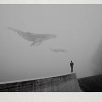 Martin Vlach ködben úszó, ábrándos tájképei