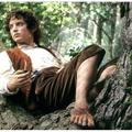 Gyorshír - Egy Frodo mind felett!