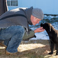 HOT DOGS! 2013 kutyás pasijai