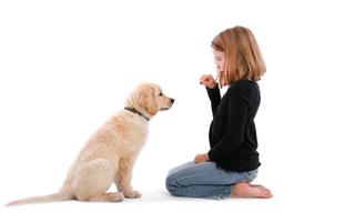 10 szabály, amit a kutya nevelése során érdemes betartanod