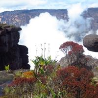 Roraima, egy másik bolygó