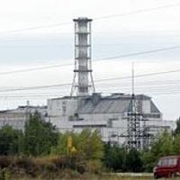 Veszett farkas harapott meg hat embert Csernobilban