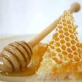 A méz helyettesítheti az antibiotikumot?