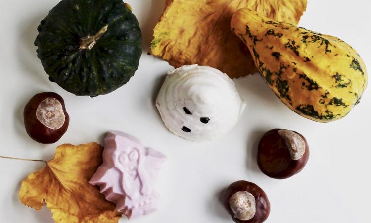 Őszbe burkolózva - Szépséges november