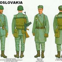 A VSZ. katonái: Csehszlovákia