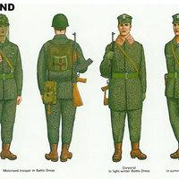 A VSZ. katonái: Lengyelország