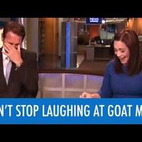 A bemondónő nem bírta ki röhögés nélkül a kecskeemberes hírt