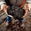 Kína tovább növeli érdekeltségeit a kanadai olajhomok-kitermelésben