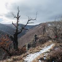 Börzsöny télen