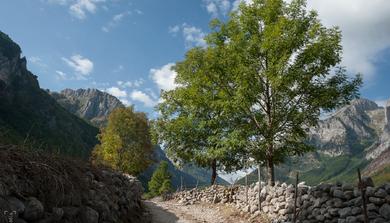 Völgyön át az albán határig