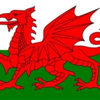 A walesi pacsirta