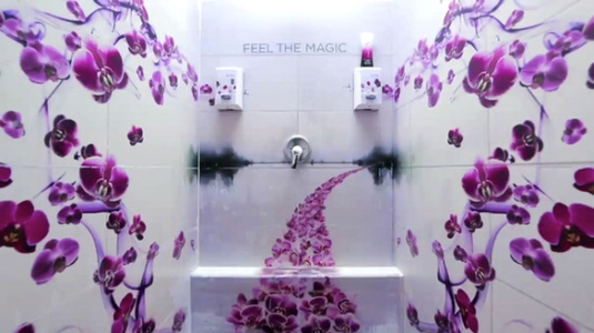 Tusolj orchideák közt