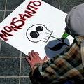 Mitől lesz egy élőlény GMO?