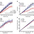Mire jó a GMO? 18. - Az elhízás
