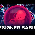 Genomszerkesztési animációs egyveleg