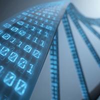 A DNS a jövő adathordozója?