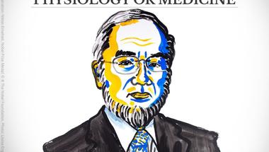 Miért emészted magad? - Orvosi Nobel díj 2016