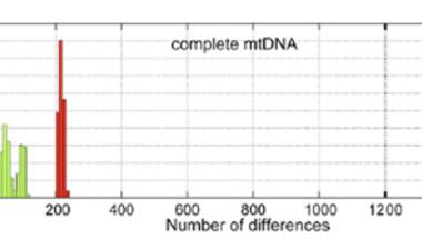 A neandervölgyi mitokondrium titka