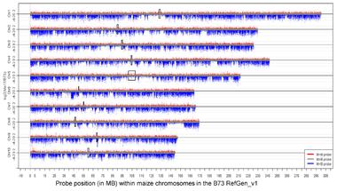 A hagyományos növénytermesztés veszélyei 10. - Változó genomok